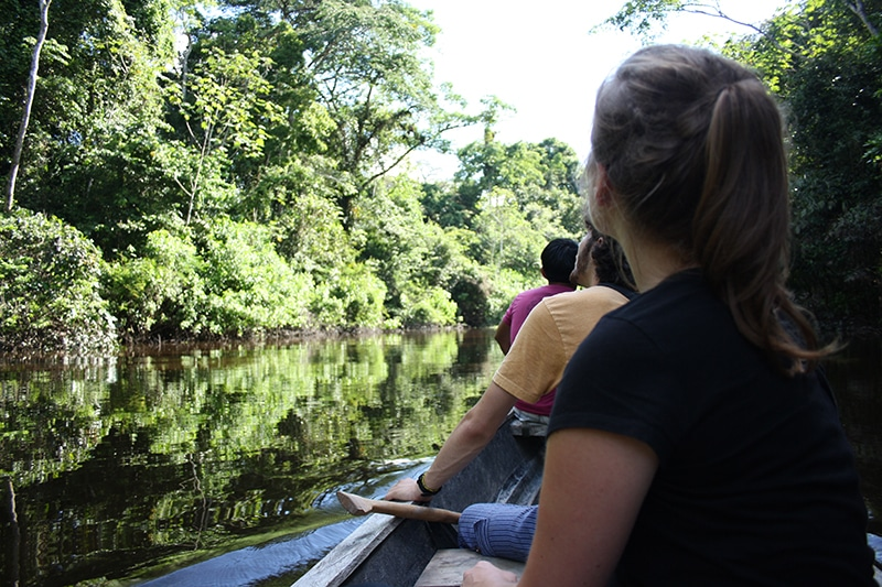 Mit Kindern in den Regenwald reisen