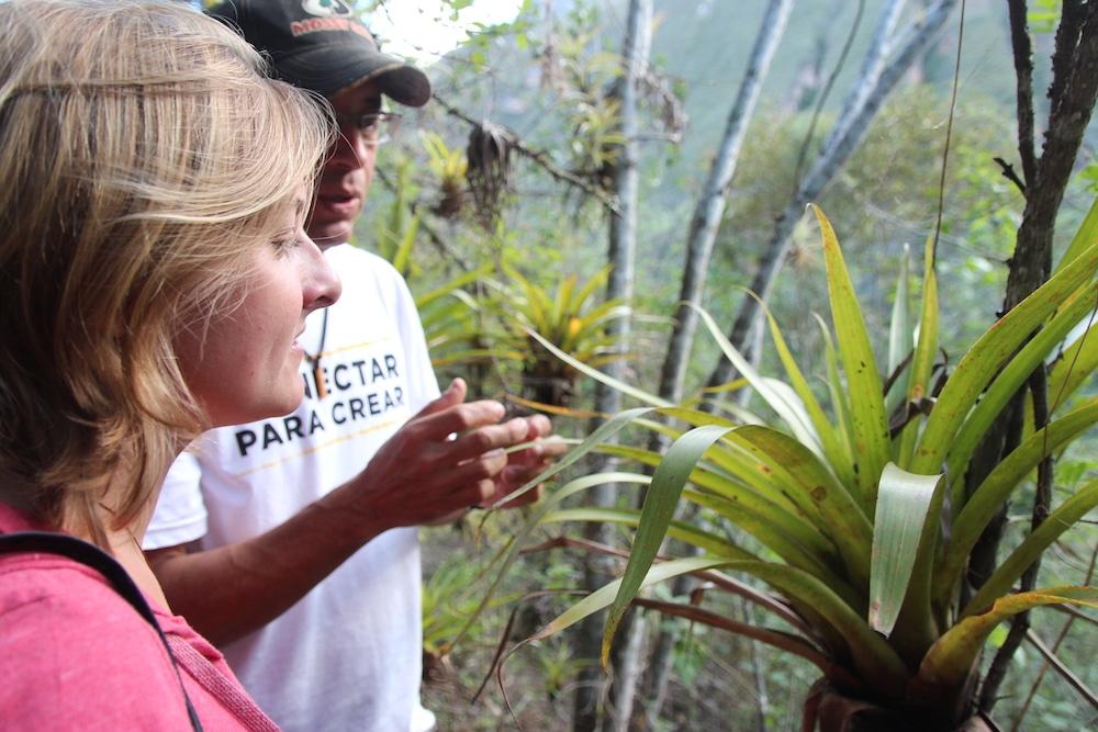 Umweltschutz Peru