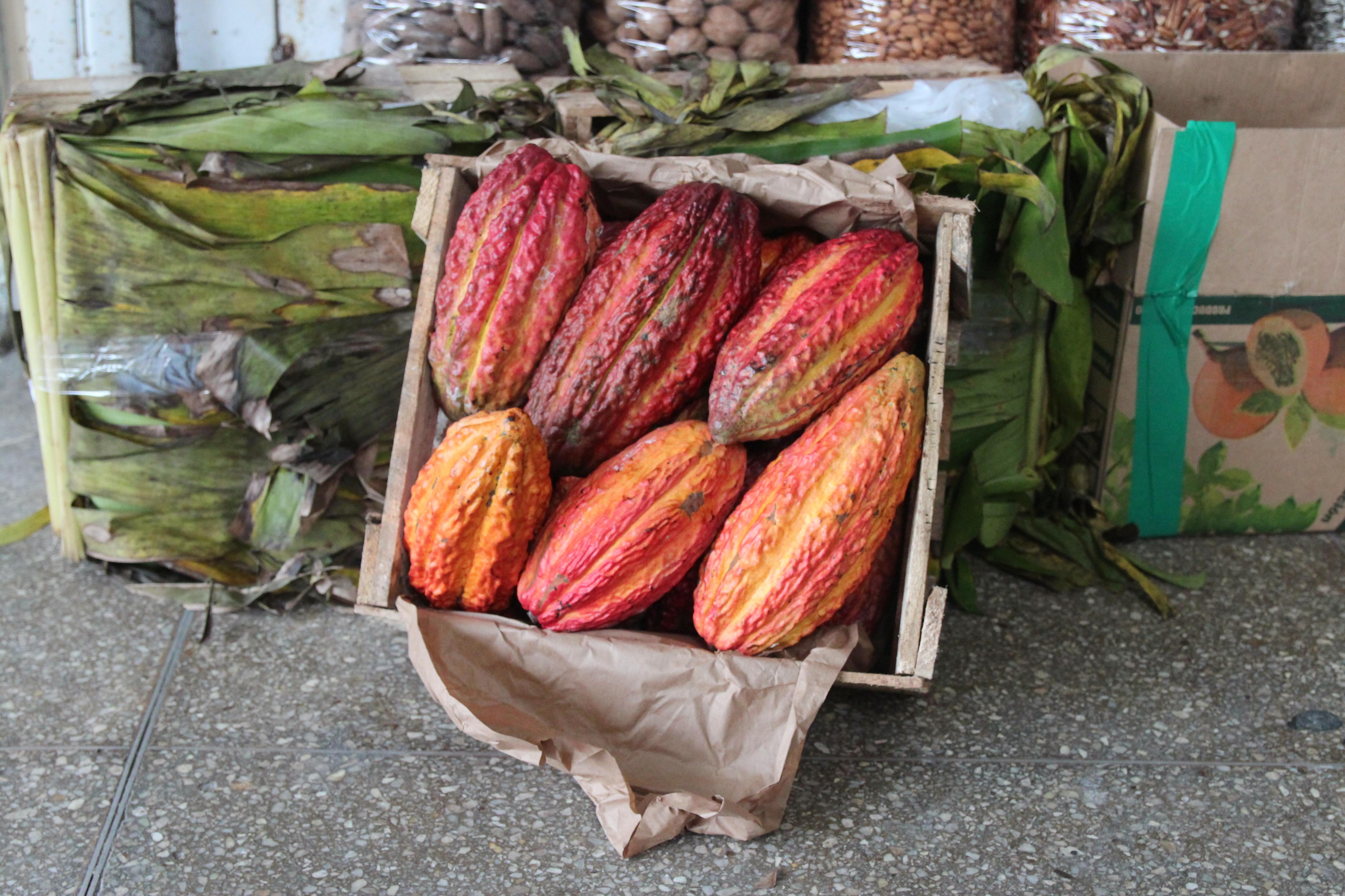 Kakaofrucht auf dem Markt in Lima