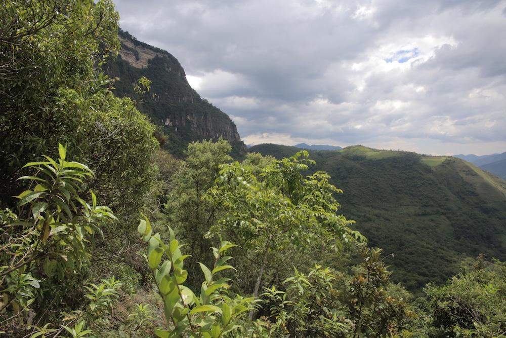 IMG_4985cuispes_chachapoyas_region_amazonas_peru