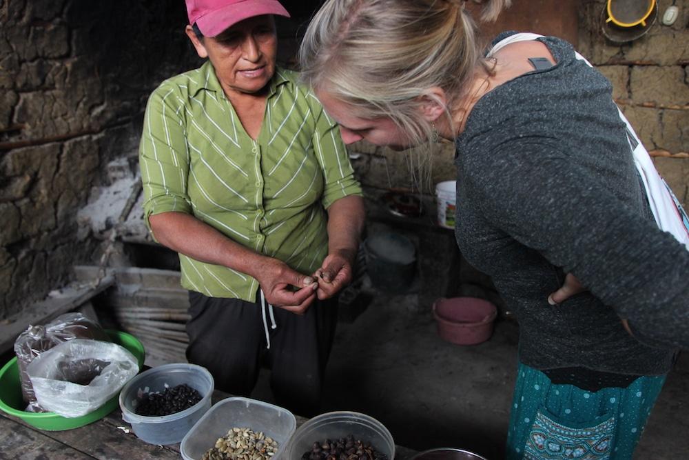 kaffee_anbau_cuispes_chachapoyas_region_amazonas_peru