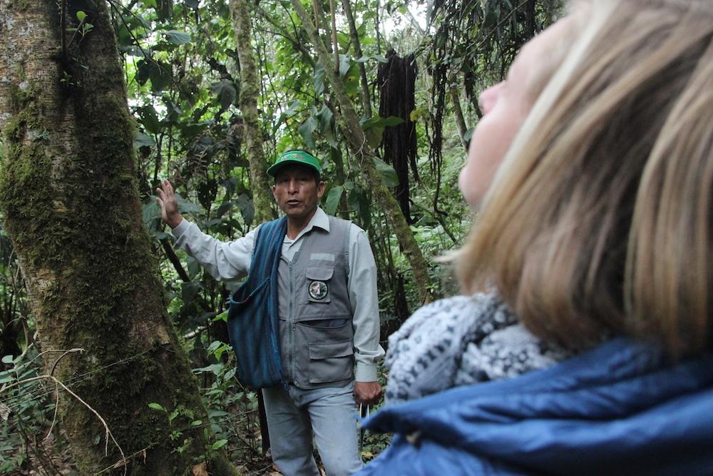 yumbilla_cuispes_chachapoyas_region_amazonas_peru