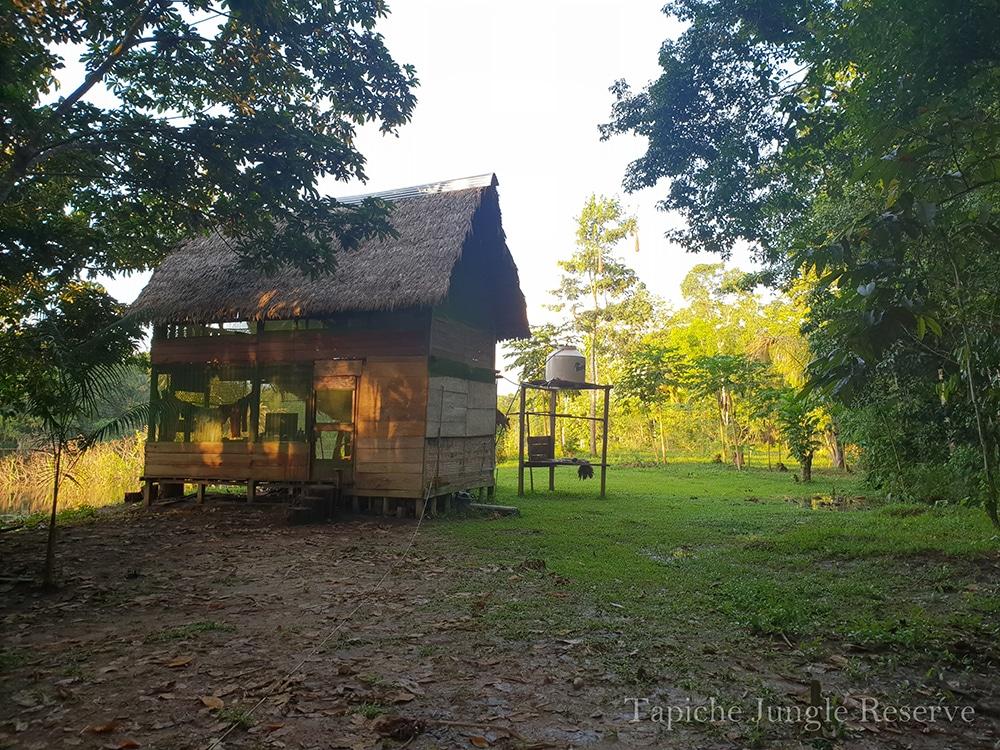 Hütte im Regenwald